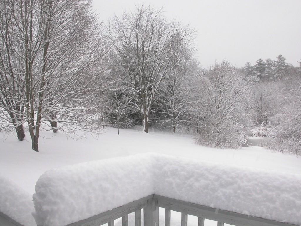 shake-snowglobe