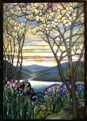 magnolia irises
