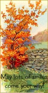 falltreeleaves