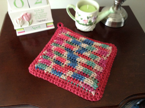 Z potholder multi cranberry